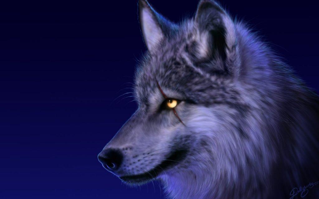 imagenes de lobos blancos para descargar