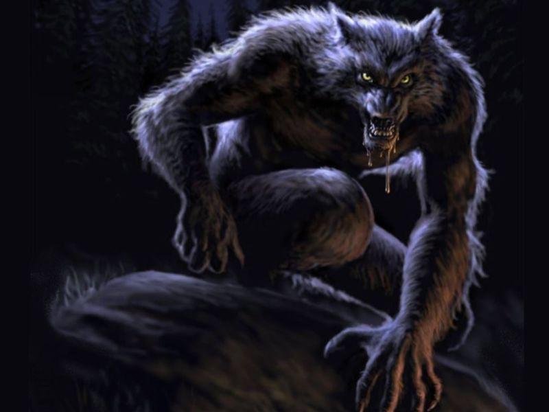 imagenes de hombres lobos para fondo