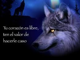 Lobo con frase