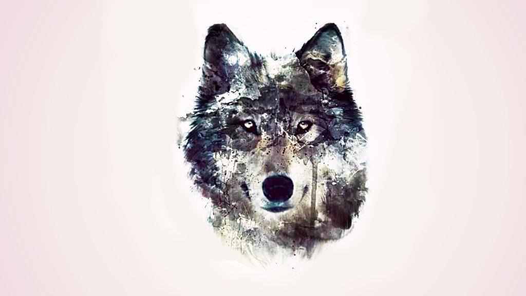 fondos de pantalla gratis para pc lobos