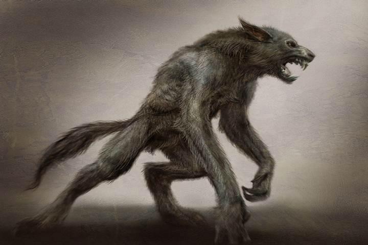 imagenes de hombres lobo reales