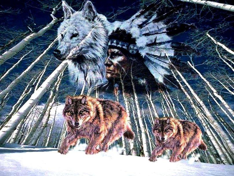 fondos de pantalla de indios y lobos