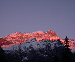 Wallpaper monte rosa