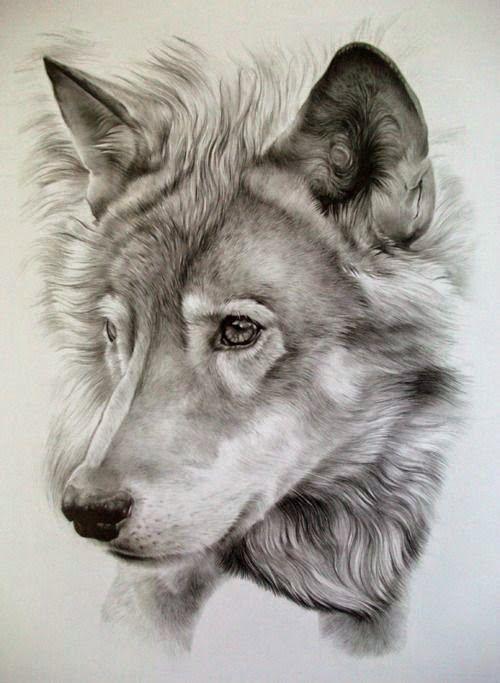 caras de lobos para tatuar