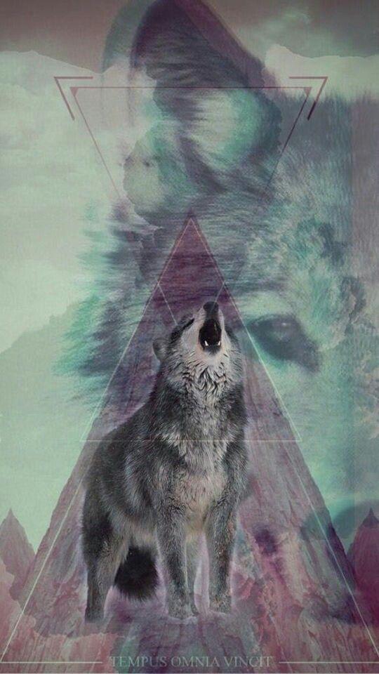 fondos de pantalla de lobos para celular que se mueven de lobos