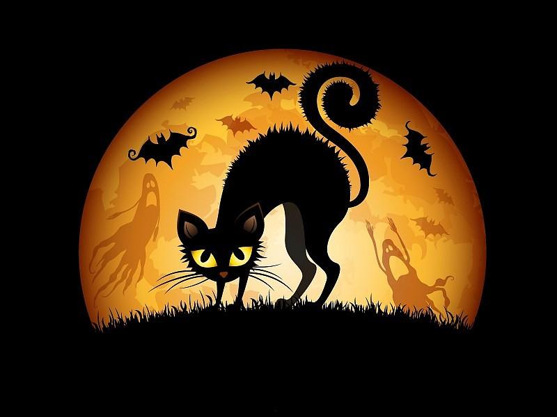 fondos de pantalla de halloween animados gratis