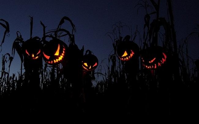 Fondos de pantalla de Halloween con movimiento gratis