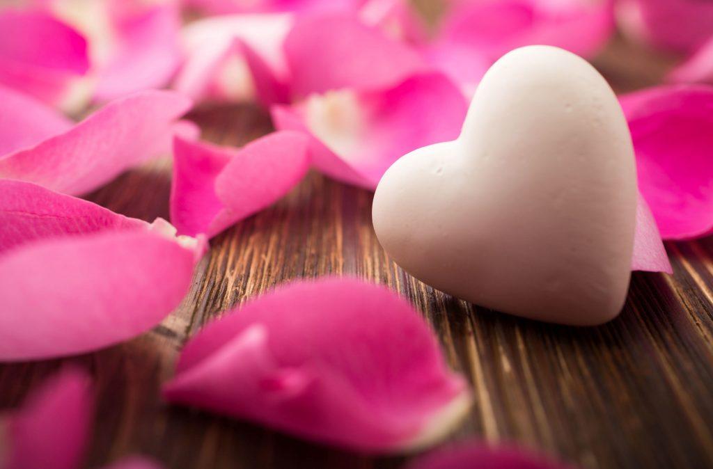 pink rose petals heart
