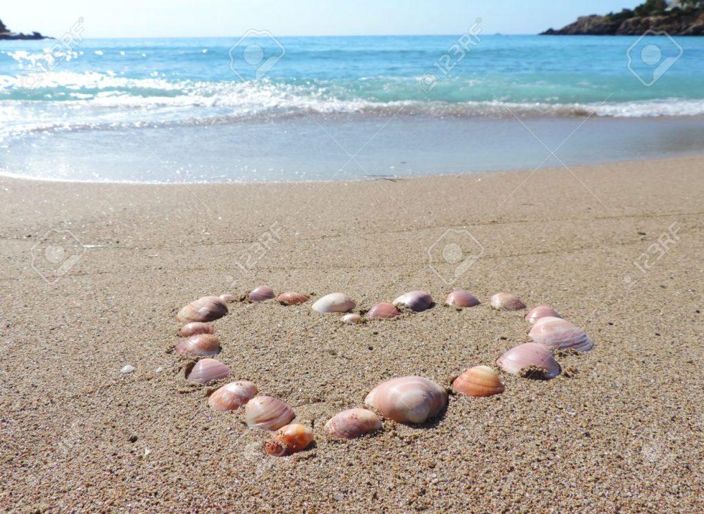 heart sand shell