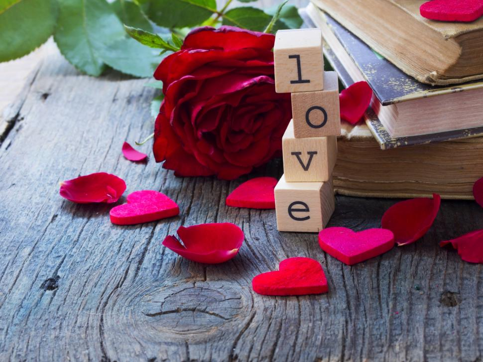 red rose petals heart