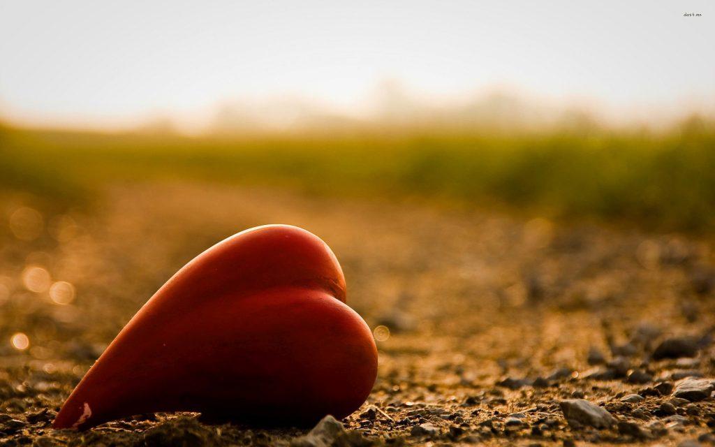 macro haribo hearts