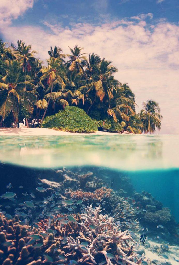 fondos tumblr de la playa