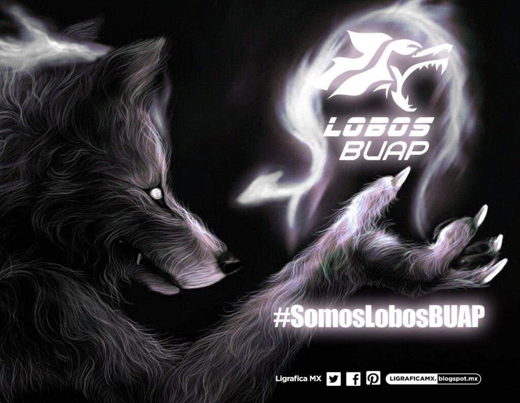 Somos lobos