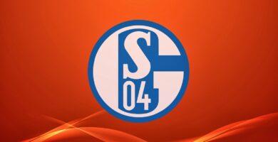 Fondos del Schalke