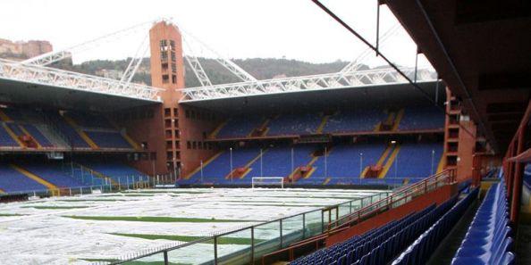 Estadio para fondo