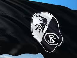 Bandera para pc