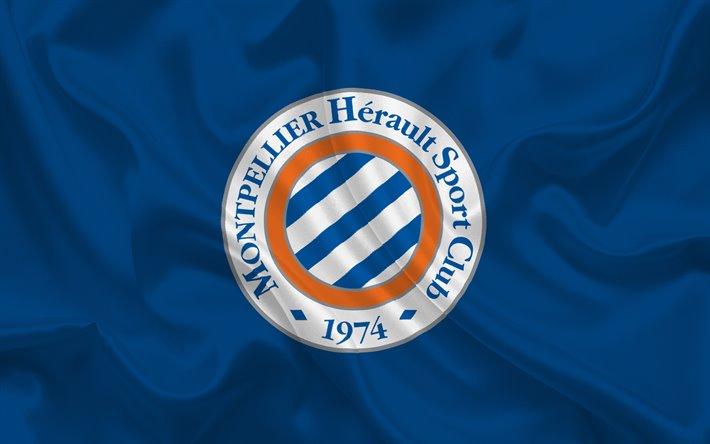 Bandero y logo