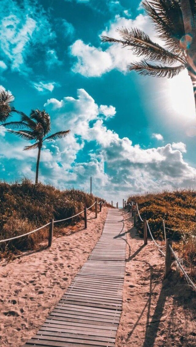 Caminos de Miami
