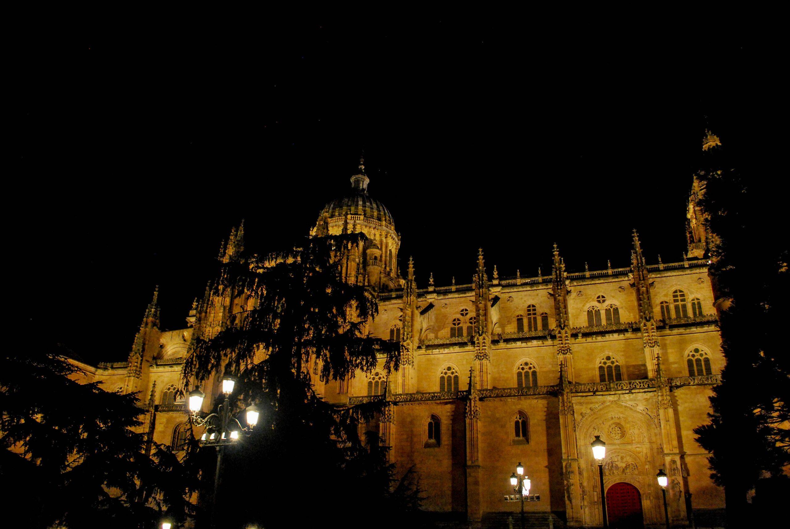 Mira Salamanca de noche