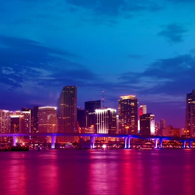 Visita todo Miami
