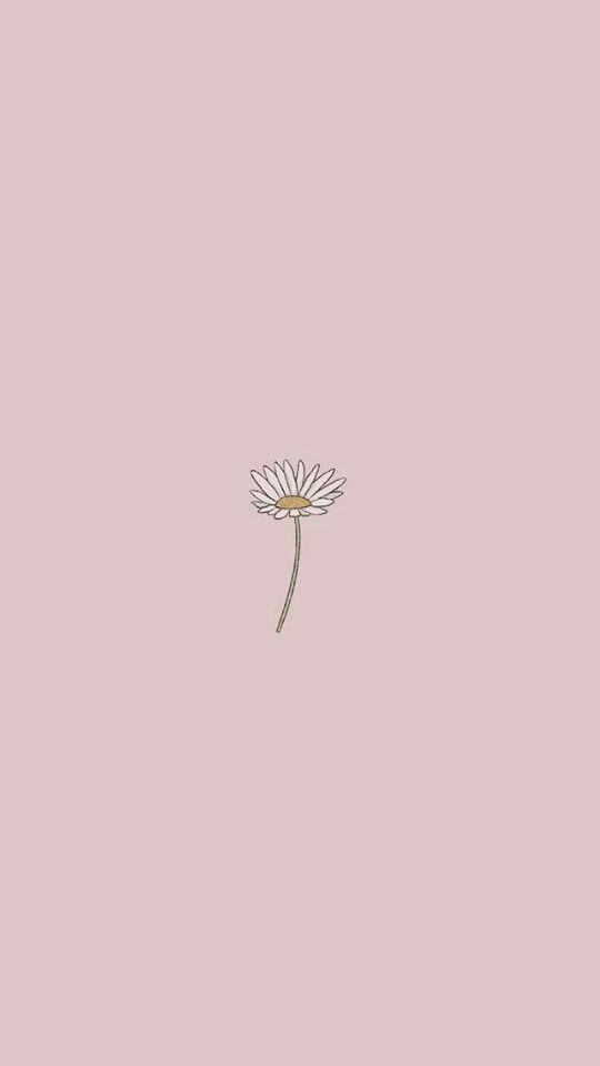 Fondos minimalistas aesthetic